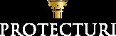Protecturi | Asociación para la Protección del Patrimonio Histórico.
